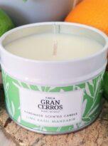 Lime Basil Mandarin Candle (4)